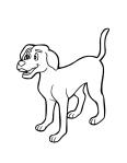 dog2-04